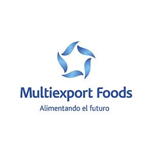 25-MULTIEXPORT